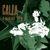 CALLA - It Dawned On Me