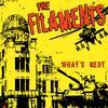 The Filaments - What's Next (Explicit)