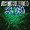 Various Artists - Dr. Dre Tribute - An Instrumental Tribute To Dr. Dre