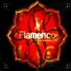 Various Artists - Music Brokers - Flamenco New Grooves