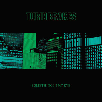 Turin Brakes - Something In My Eye