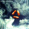 Porcupine Tree - Voyage 34