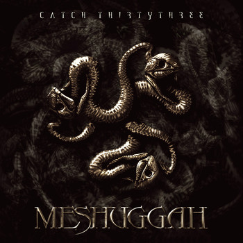 Meshuggah - Catch ThirtyThree