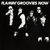 - Flamin' Groovies Now