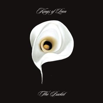Kings Of Leon - The Bucket