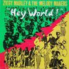 Ziggy Marley And The Melody Makers - Hey World