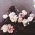 - Power, Corruption & Lies [Collector's Edition]