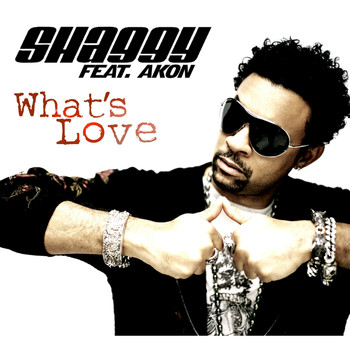 Shaggy Feat. Akon - What's Love