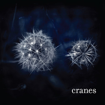 Cranes - Cranes