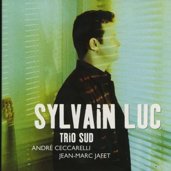 Sylvain Luc - Trio Sud