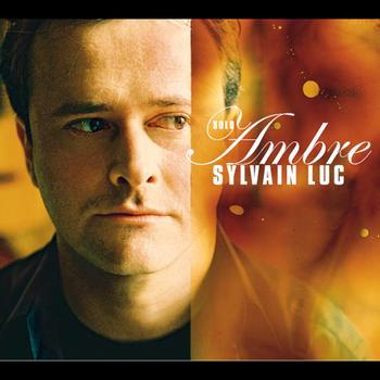 Sylvain Luc - Ambre