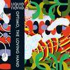 Liquid Liquid - Remixes