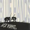 The Hot Puppies - Blue Hands