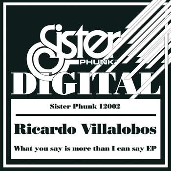 Ricardo Villalobos - What You Say Is More Than I Can Say - EP