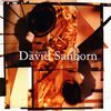 David Sanborn - The Best Of David Sanborn