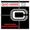 Quo Vadis - Sonic Boom (Life's Too Short)