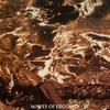 Pyogenesis - Waves of Erotasia