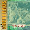 Los Cachorros De Juan Villarreal - En Vivo