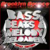 Brooklyn Bounce - Bass, Beats & Melody Reloaded! (Remix Edition)
