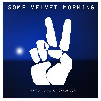 Some Velvet Morning - How to Remix a Revolution