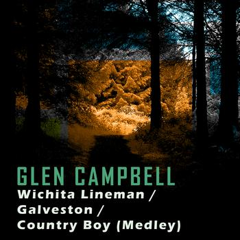 Glen Campbell - Wichita Lineman/Galveston/Country Boy (Medley)