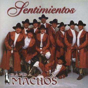 Banda Machos - Sentimientos