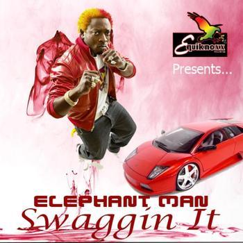 Elephant Man - Swaggin It