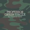 Professor Green - Jungle (Explicit)