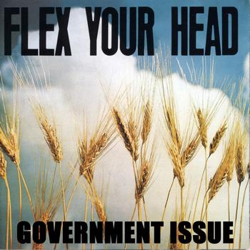 Government Issue - Flex Your Head