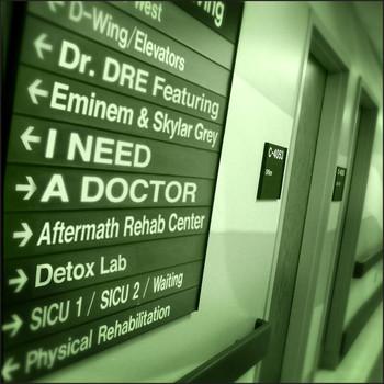 Dr. Dre / Eminem / Skylar Grey - I Need A Doctor