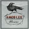 Amos Lee - Flower