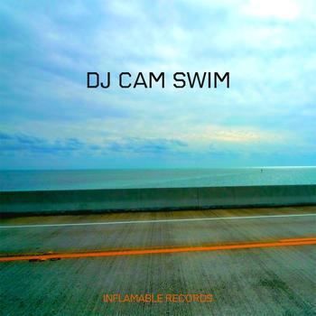 Dj Cam - Swim