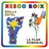 Xesco Boix - Brilla Estel / La Flor Romanial