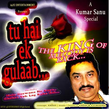 Kumar Sanu - Tu hain ek gulaab