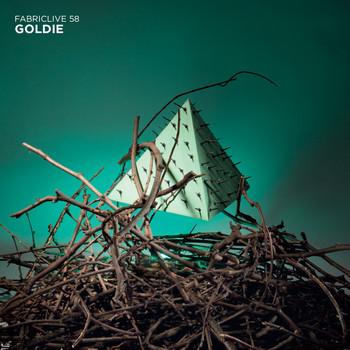 Goldie - FABRICLIVE 58: Goldie