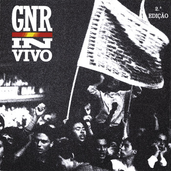 GNR - In Vivo