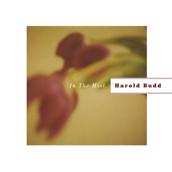 Harold Budd - In The Mist