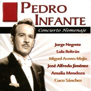 Pedro Infante - Pedro Infante - Concierto Homenaje