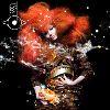 Björk - Biophilia