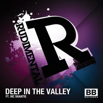 Rudimental - Deep in the Valley (feat. MC Shantie)