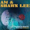 AM & Shawn Lee - Promises Are Never Far From Lies Remix EP
