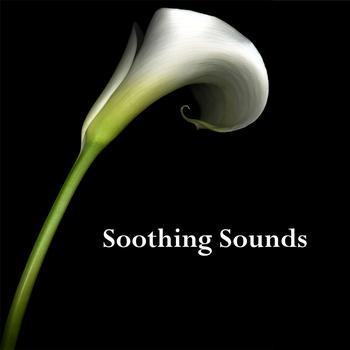Various Artists - Soothing Sounds
