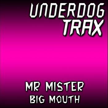 Mr Mister - Big Mouth