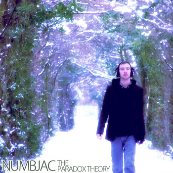 NUMBJAC - The Paradox Theory