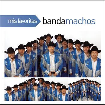 Banda Machos - Mis Favoritas