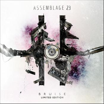 Assemblage 23 - Bruise
