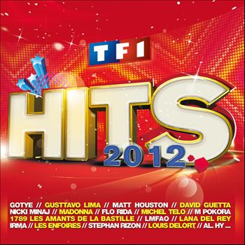 Multi Interprètes - TF1 Hits 2012