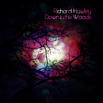 Richard Hawley - Down in the Woods