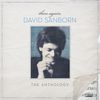 David Sanborn - Then Again: The David Sanborn Anthology