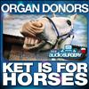 Organ Donors - Ket Is For Horses